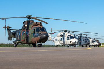 Transporthubschrauber Cougar und Seehubschrauber NH-90 auf dem Vorfeld von Jimmy van Drunen
