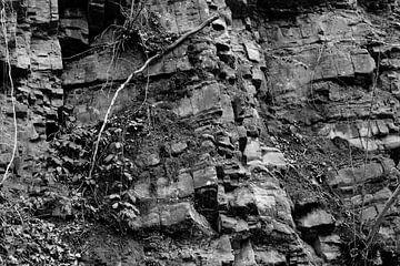 rotswand van Joyce Pals