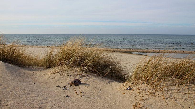 Ein wolkiger Tag von Ostsee Bilder