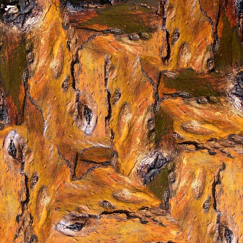 Bark (3) van