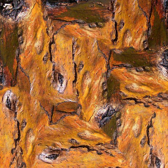 Bark (3) van Jeroen van der Meij