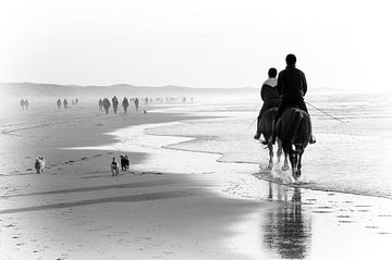 Aan het strand van Wil van der Velde