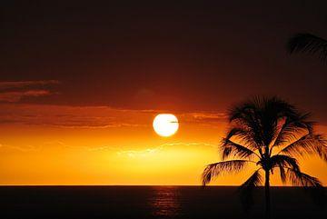 Sonnenuntergang auf Hawaii von