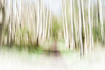 Een abstract landschap - kleurenversie van Danny Budts