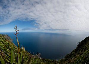 Uitzicht over de zee