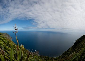 Uitzicht over de zee van