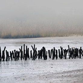 Im November am Fluß - Maßstab 1:2 von Andreas Wemmje