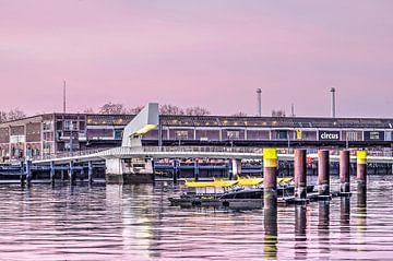 Watertaxi's, Rijnhavenbrug en Fenixloods van