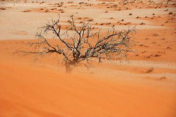 NAMIBIA ... Namib Desert Sandstorm van Meleah Fotografie