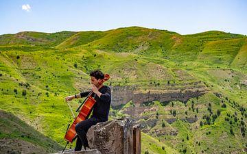 Joueur de violoncelle sur Stijn Cleynhens