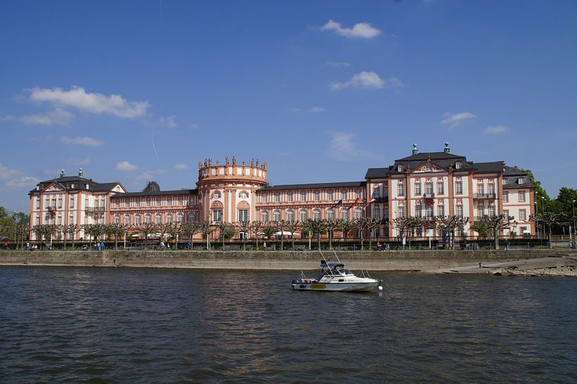 Biebrich-kasteel van Dennis Meißner