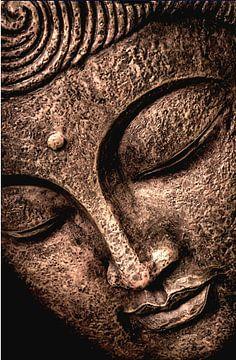 Buddha - der Gütige von Michael Ladenthin