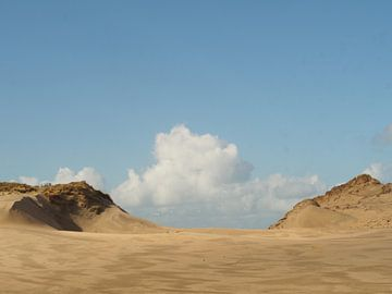 Duinlandschap van Marjanne van der Linden