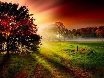 Sonnenaufgang van Peter Roder