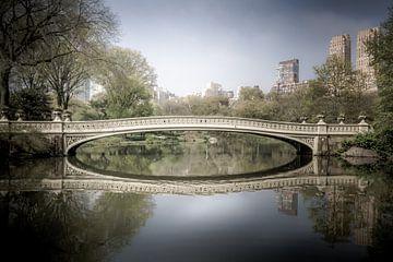 Central Park Brücke von Dennis Donders