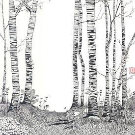 Birkenwald  von Yvonne Jansen