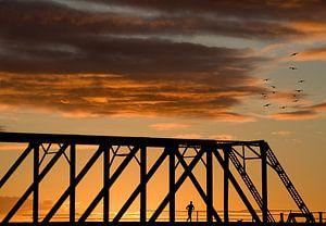 Hardloper op brug van
