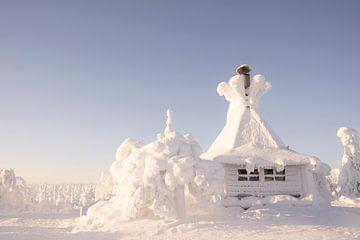 Kota im Schnee in Finnisch-Lappland von elma maaskant