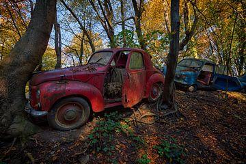 Verlassene Autos in einem Wald von Carola Schellekens