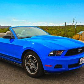Ford Mustang van Menno Heijboer
