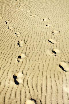 Sur une plage empreintes de pieds ridée vide sur une journée ensoleillée sur Tony Vingerhoets