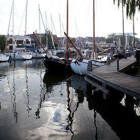 De haven van Enkhuizen van Kees van Dun