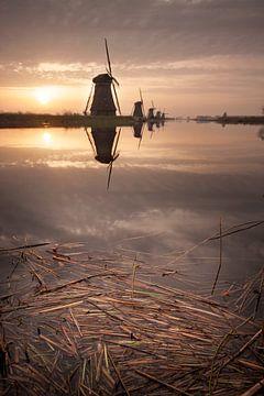 Zonsopkomst Kinderdijk van Halma Fotografie