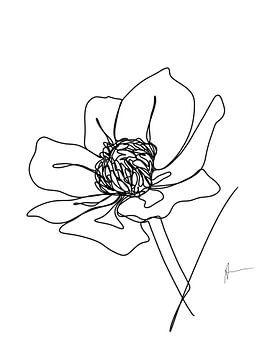 Eine Strichzeichnung Buttercup von Ankie Kooi