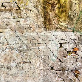 Plâtre fissuré sur Frans Blok