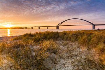 Gouden licht bij Fehmarnsund van Ursula Reins