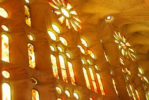 La Sagrada Familia in Barcelona van