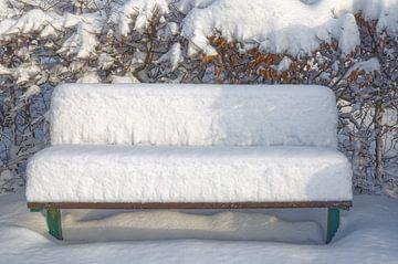 Winter in het park van Peter Eckert