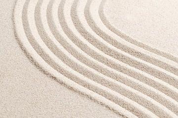 Sandwelle II von Rudy & Gisela Schlechter