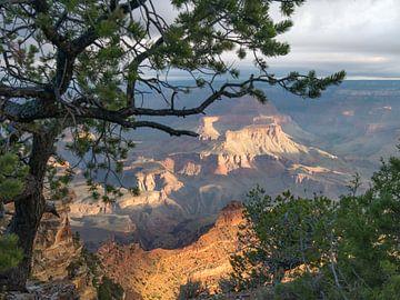 Grand Canyon tijdens zonsopkomst van Moniek van Rijbroek