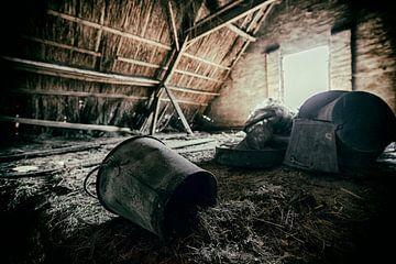 Old Farm #6