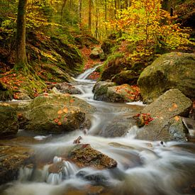 Herfst in de Belgische Ardennen van Nando Harmsen