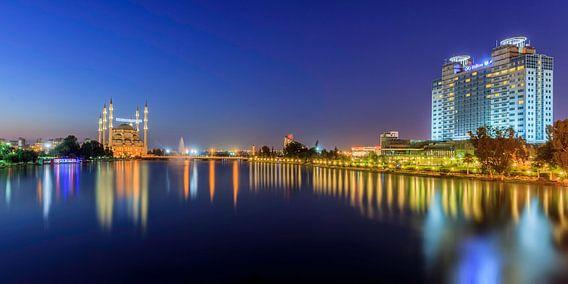 Adana tijdens het blauwe uurtje van Roy Poots