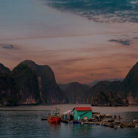 Traditionele visserij in Bai Tu Long van Zoe Vondenhoff