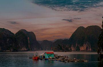 Traditionele visserij in Bai Tu Long von Zoe Vondenhoff