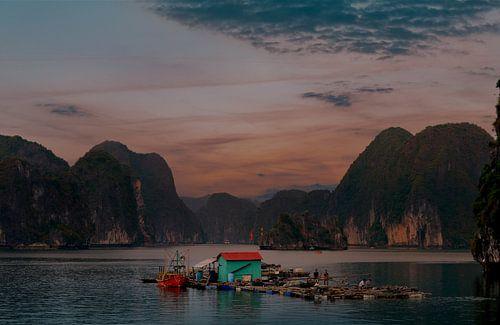 Traditionele visserij in Bai Tu Long van