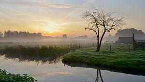 Kortenhoef net voor zonsopkomst