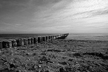 Buhnen am Strand von Frank Herrmann