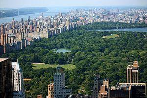 new york city ... concrete jungle IV