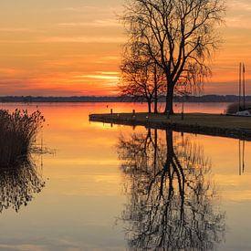 Baum am See von Marga Vroom