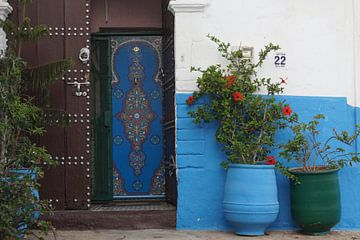 marokko Fes van joyce kool