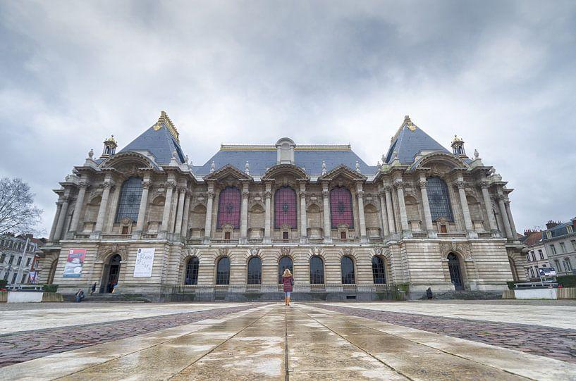 Museum voor Schone Kunsten van Mark Bolijn