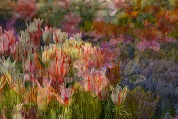 Frühlingsimpressionismus von Marika Rentier