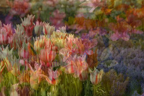 voorjaar Impressionisme