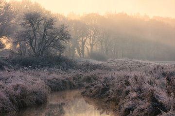 Nationaal Park Drentsche Aa op een mooie mistige winterochtend met rijp op het land tijdens zonsopko van Bas Meelker