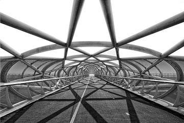 de Netkous, Rotterdam, fietsbrug over de A15 van Tilly Meijer